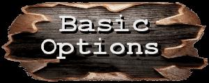 basic options